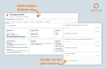 Pulse Surveys