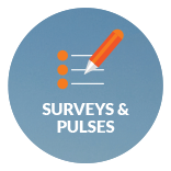 Surveys and Pulses