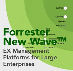 EX Management Platforms for Large Enterprises